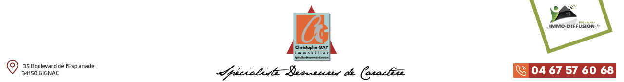 Christophe Gay immobilier